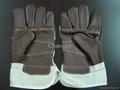 jean cotton cowhide glove 4