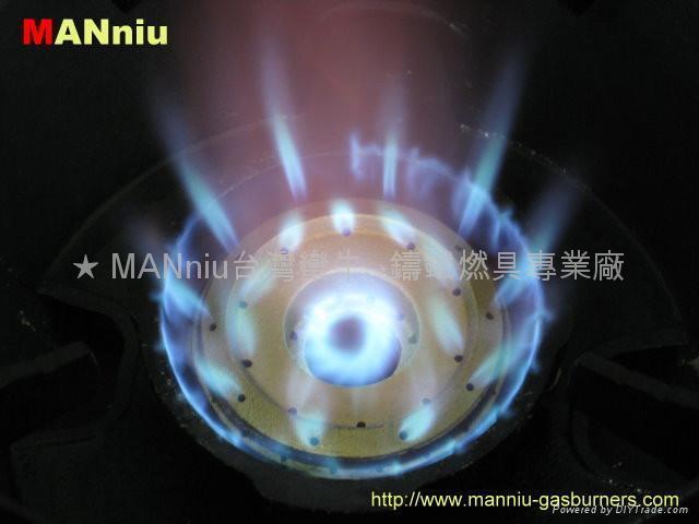 F22    gas fast burners 2
