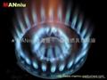 L12   蓝菊火中压快速猛火铣铁炉