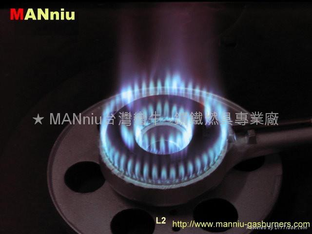 T21  High effiency gas burners 2