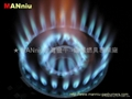 L01   gas fast burners
