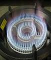 21A 31A   顶级猛火天然气低压生铁炉