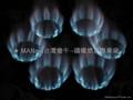 NP18A  双管18头天然气喷火炉