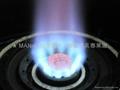 LN12  棒棒炉