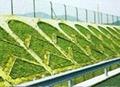 绿化围栏 2
