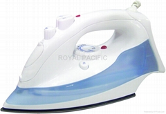 Hotel steam iron