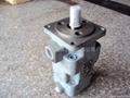 YB1-12/4双联油泵