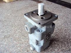 YB1-12/4雙聯油泵
