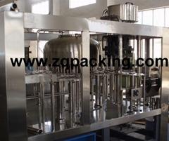 CGF24-24-8 Mineral water bottling