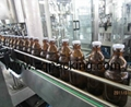 BDGF Tribloc Beer Filling machine