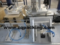 ZQ-D-25CP  sink type carton wrap around package machine