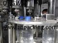 CGF18-18-6纯净水冲瓶、灌装、封盖三合一体机 4