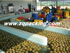 Automatic Tropic Fruit Pineapple juice Processing Line/machine/equipment /plant
