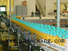 Bottle conveyor chain for beverage industry ,bottle transport system ,delivery
