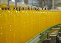 Plastic Bottle conveyor system