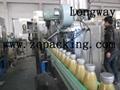 twist off/ screw capping machine ,Cap seaming machine
