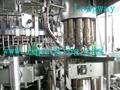 ROPP/ Aluminium Screw Capper ,Capping machine
