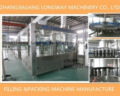 automatic glass bottle green tea filling line/Machine/Equipment
