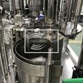 CGF8-8-3 冲瓶灌装封口三合一机组 5