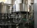 CGF50-50-12 纯净水灌装机  纯净水生产线 4