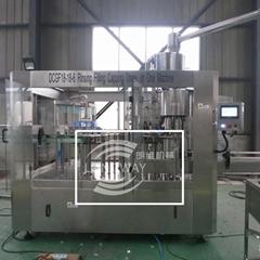 DCGF18-18-6 PET瓶含氣飲料灌裝機