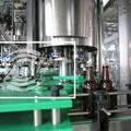 BDGF啤酒沖瓶灌裝皇冠壓蓋機 5