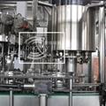 BGF24-6 啤酒灌裝壓蓋二合一設備 3