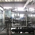 Aluminum Cap Glass Bottle Rinsing Filling Capping  3-IN -1 unit