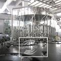 扁瓶玻璃瓶威士忌灌装机 扁瓶铝盖白酒冲洗灌装旋盖一体机 3