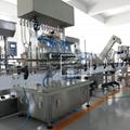 潔廁液灌裝機 84消毒水灌裝機  5