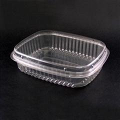 Plastic Food Container (Fruit Box)