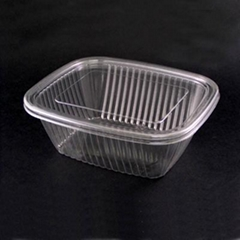 Plastic Food Container (Fruit and salad box)