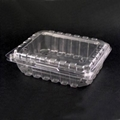 Plastic Food Container (Fruit Box)