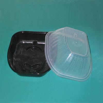 Plastic Food Container (grilled chicken box) 1