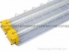 LED防爆应急日光灯(内置应急电源)