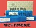铸308纯镍铸铁电焊条
