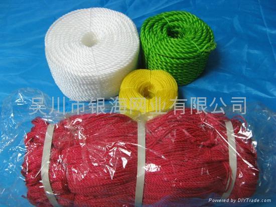 聚乙烯PE繩 4