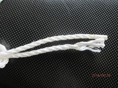 聚丙烯扁絲繩