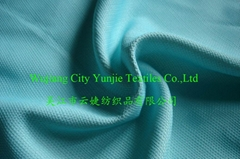 Polyester Canvas Fabric