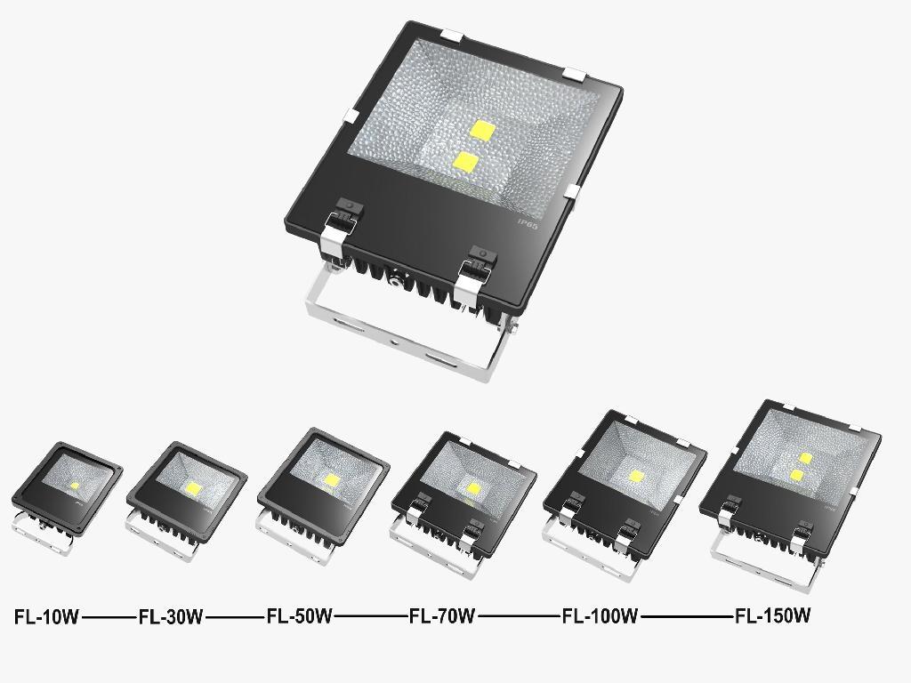 LED Flood Lamps 100W 2