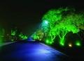 LED Flood Lights 30W
