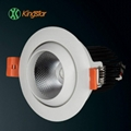 COB LED Downlight 1