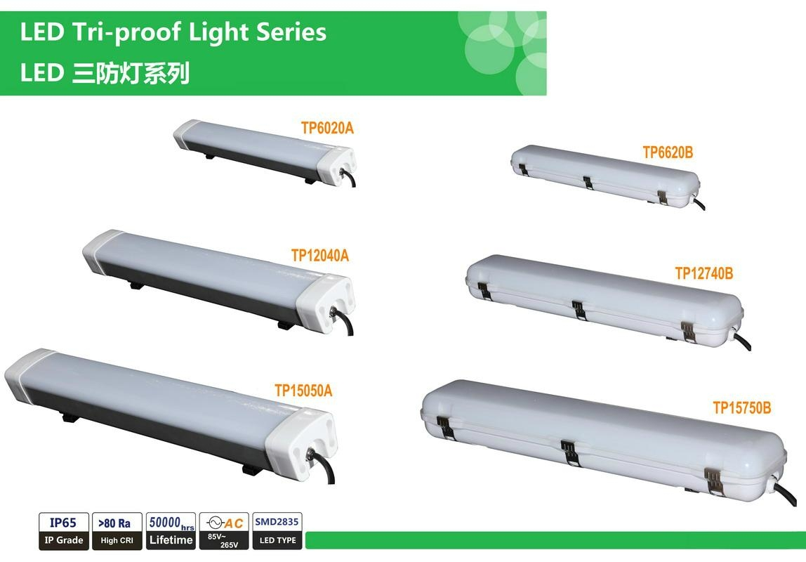 LED Tri-proof Light