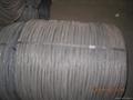 Black Iron Wire Annealed Wire 4