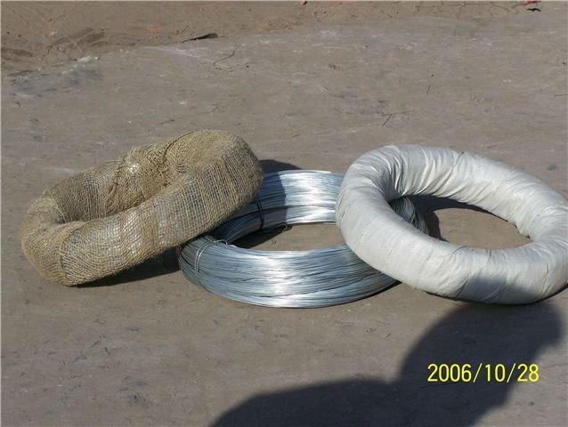Electro Ga  anized Wire 3