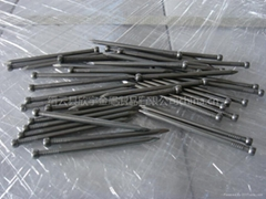 Q195 bright polished common wire nail