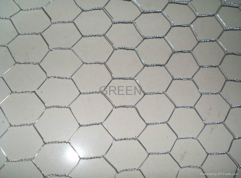 Hexagonal Wire Mesh 1