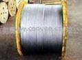 316L不锈钢钢丝绳