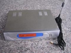 GSM无线接入固定终端