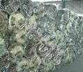 现货供应 鸡舍猪舍专用玻璃棉卷毡 离心玻璃棉毡 格瑞玻璃棉卷毡